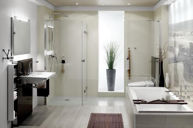 bad dusche ideen. Black Bedroom Furniture Sets. Home Design Ideas