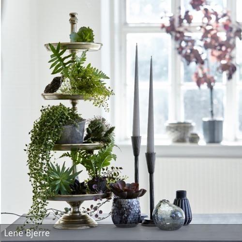 Pflanzen deko wohnzimmer for Zimmer deko blumen