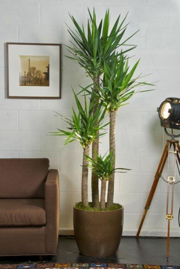 Pflanzen deko wohnzimmer