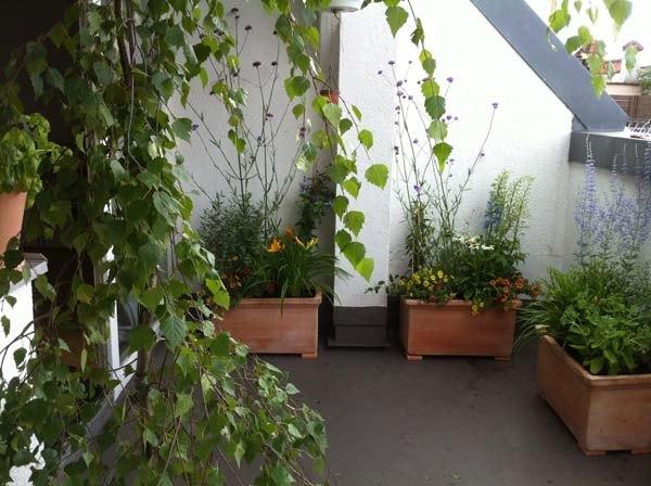Gestaltung balkon - Einzimmerappartement einrichten ...