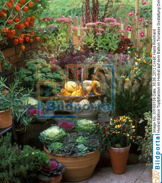 balkon dekoration herbst