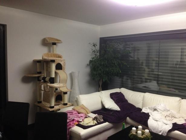 Einrichtung wohnzimmer mit offener küche