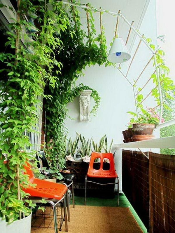 Pflanzen Für Wohnzimmer pflanzen ideen wohnzimmer